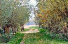 running-road-1-600