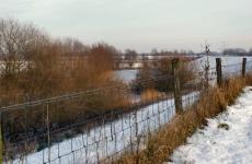winterdijk-600-1
