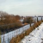 Winter and Snow on Waaldijk in The Netherlands